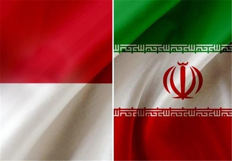 اعضای هیئت پارلمانی اندونزی 22 آذر به تهران می آیند