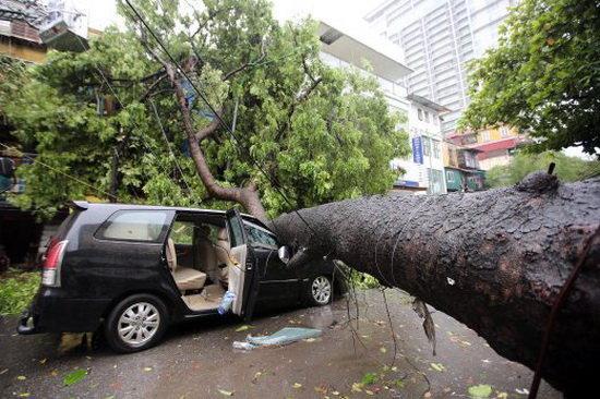 افزایش تلفات طوفان در ویتنام