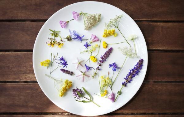 12 گل خوراکی برتر و خواص بی نظیر هر کدام برای سلامتی