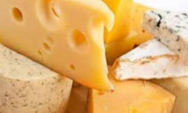 پنیر از فراوری تا مصرف